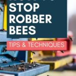 picture of honey bee hives stop robber bees