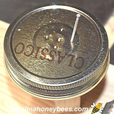 Lid for bee feeder with holes near the center image.
