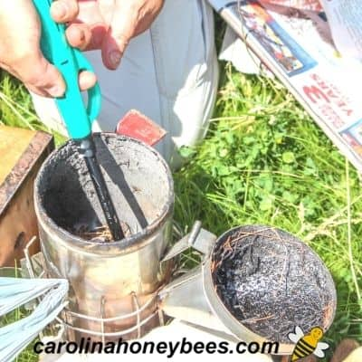 Beekeeper lites up a bee smoker with a propane torch image.