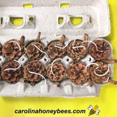 pine cone beeswax firestarter in carton