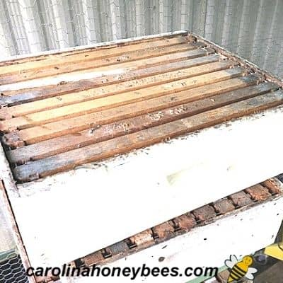 stacks of honey supers being stored over Winter