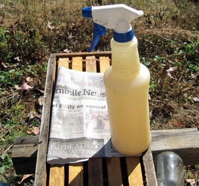 Sugar spray bottle and newspaper to feed bees image.