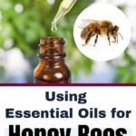 picture of essential oil bottle and honey bee, using essential oils for honey bees