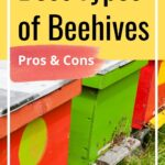 Colorful beehives in apiary best types of beehives pros and cons image.