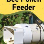 Homemade dry pollen feeder for honey bees image.