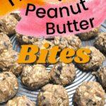 Homemade peanut butter honey oatmeal bites recipe image.