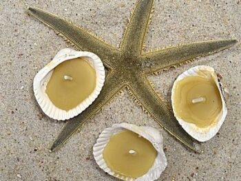 tealight candles make with beeswax and seashells on beach sand