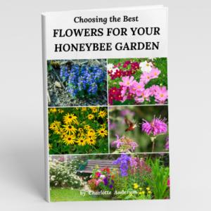 Choosing the Best Flowers for Your Honeybee Garden