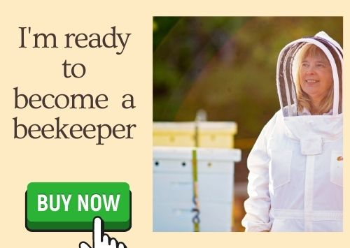 image of beekeeper charlotte and buy now button