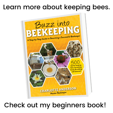 buzz beekeeping book