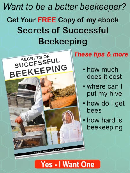 pictures of beekeeping activity - free copy of ebook about successful beekeeping