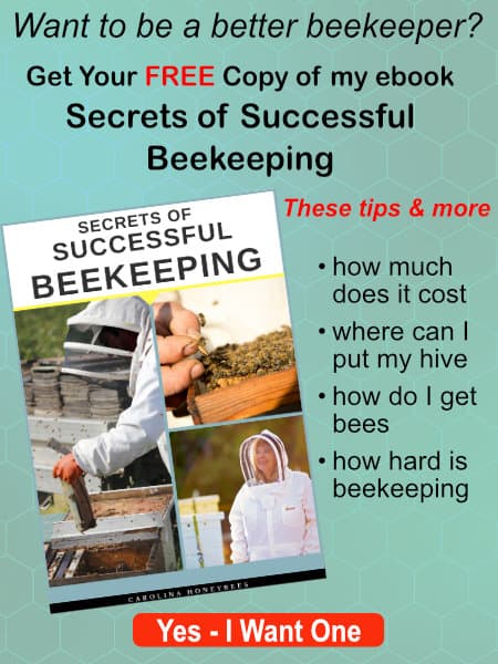 image of free secrets of successful beekeeping book
