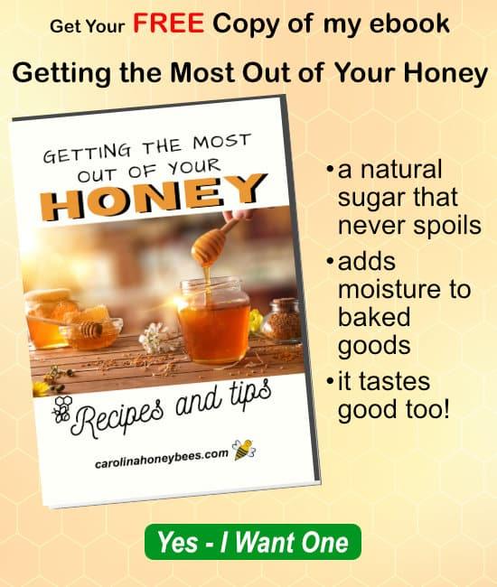 free honey ebook and recipes image.