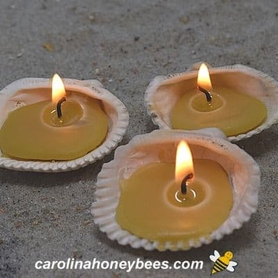 trio of burning beeswax seashell tealight candles on a bed of  beach sand