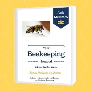 beekeeping journal mock up