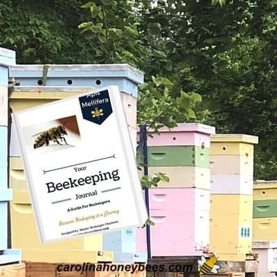 image of beehives in a row and inset of beekeeping journal for hive records