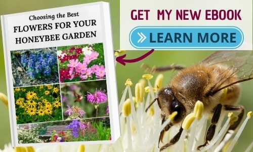 image of pollinator ebook to help grow your bee garden