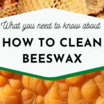 picture of raw beeswax and cleaned beeswax how to clean beeswax