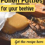 Honey bee eating pollen patty in beehive image.