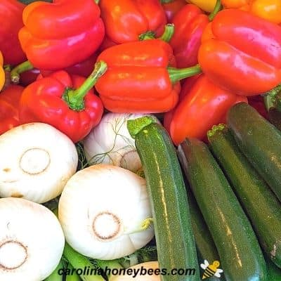 image of produce that relies on insect pollination - onions, squash, peppers