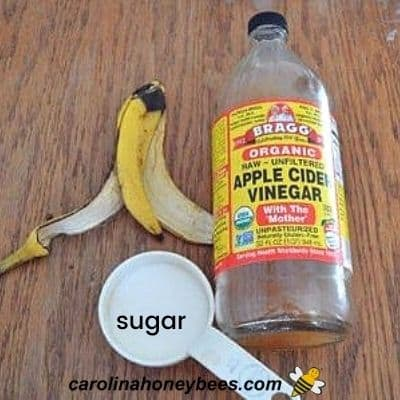 Vinegar, banana and sugar ingredients to make a wasp trap bait image.