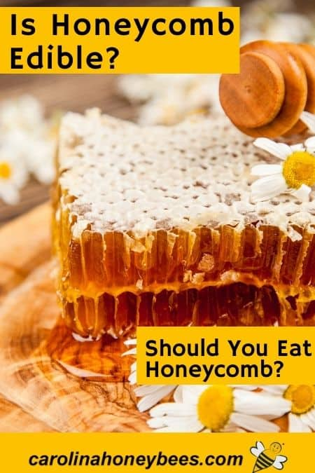 image of raw honey comb and honey dipper is honeycomb edible