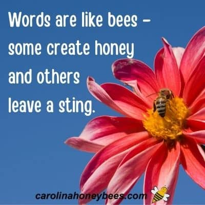 Bee Quotes and Popular Sayings