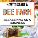 images of beekeeping business products how to start a bee farm