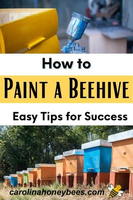 picture of colored hives how to paint a beehive