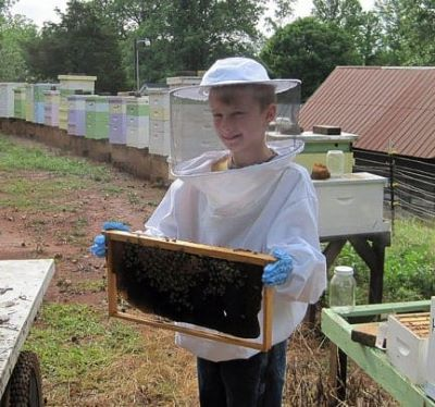 picture of young beekeeper protected from stings by bee jacket