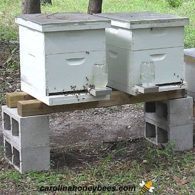 Two bee hives sitting on a homemade hive stand image.