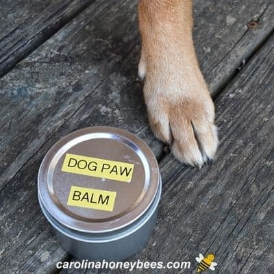 Dog Paw Balm-Make Your Own