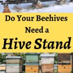 Beehives sitting on various hive stands image.