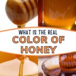 Various colors and shade of honey image.