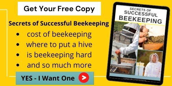 Free secrets of beekeeping link image.