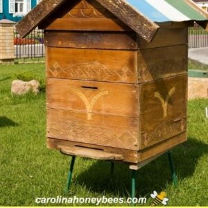 Beehive sitting on stand with grass under image.
