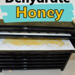 Dried honey in a dehydrator tray how to dehydrate honey image.