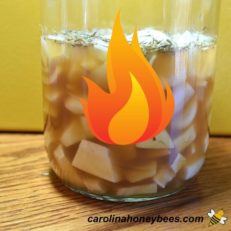 Fire Cider With Honey-Why You Should Try It