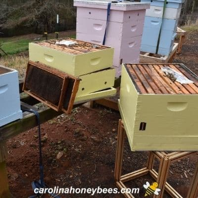 Beehive management of several hives during inspections image.