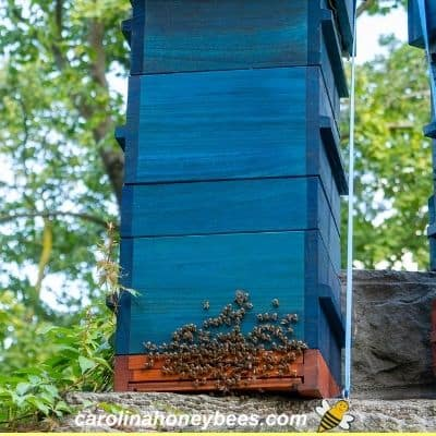 Tall beehive with stacked boxes on cement foundation image.