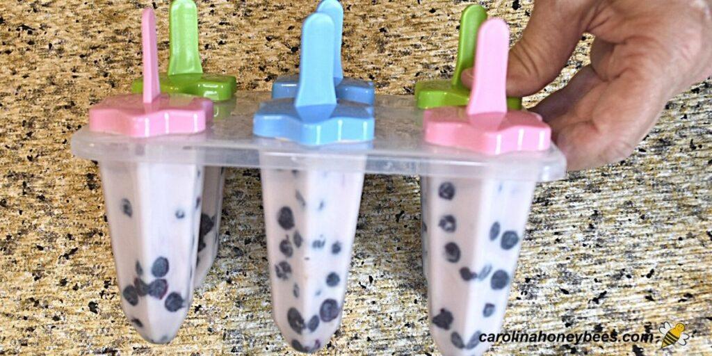 Honey yogurt ice pops in molds image.
