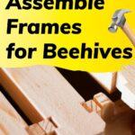 Wooden hive frames how to assemble frames for beehives image.