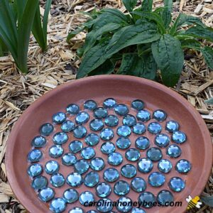 Clay saucer bee waterer craft made with glass stones image.