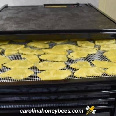 Dehydrator with pineapple honey slices on trays image.