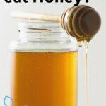 Honey in jar and dipper do vegans eat honey image.