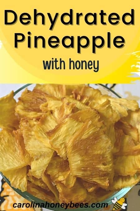 Dehydrated pineapple slices honey glaze in bowl image.
