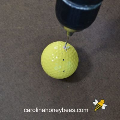 drilling marked holes in a golf ball for bee craft image.