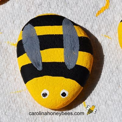 Painted rock bee with grey wings image.