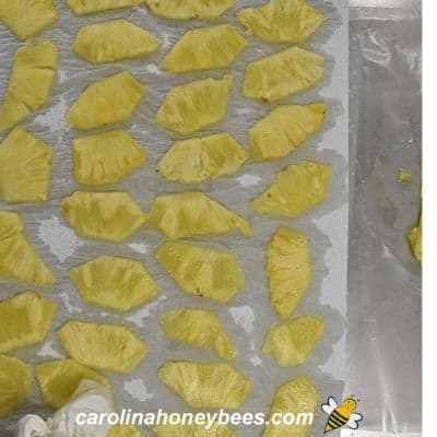 Using paper towels to remove excess moisture from pineapple pieces image.