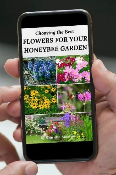 Phone with ebook version of best flowers for bee garden image.